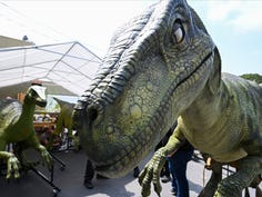 """6/25/19 2:49:59 PM -- Burbank, CA, U.S.A.: A T-Rex at a Burbank workshop assembling the puppets to be used in  the """"Jurassic World Tour"""" based on the hit Jurassic World films. Photo by Robert Hanashiro, USA TODAY Staff ORG XMIT:  RH 138096 Jurassic dinos I 06/25/2019 [Via MerlinFTP Drop]"""