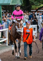 Maximum Security is ridden out to the track by jockey Luis Saez. Haskell Day races at Monmouth Park Racetrack in Oceanport, NJ on July 20, 2019.