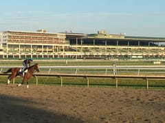 Haskell 2019 aftermath: While Maximum Security sizzled, heat cost Monmouth Park millions