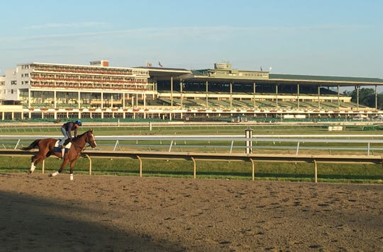 Horses were back on the track at Monmouth Park training Sunday morning, less than 12 hours after Maximum Security won the $1 million TVG.com Haskell Invitational.