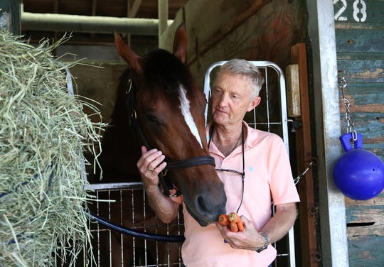 Trainer Jason Servis feeds Maximum Security carrots the morning after winning the $1 million TVG.com Haskell Invitational at Monmouth Park.