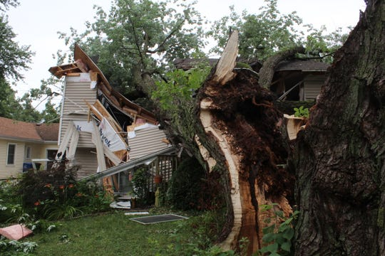 A south-side Des Moines family says they'd thought about removing this tree over the past few years — because it shed so many leaves every year — but passed, because of the many animals that called the tree home. The tree fell through the home Saturday, July 20, 2019, as storms passed through the area.