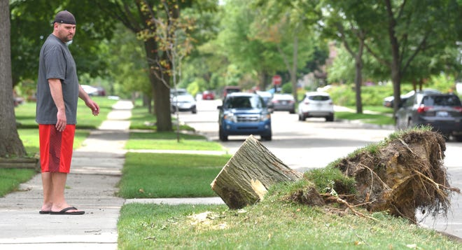Scott Golen of Dearborn looks at what's left Sunday of the tree that fell on his house, causing minor damage, on North Melborn near Sheridan.