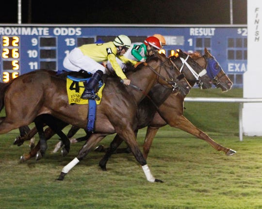 The John Henry Stakes Saturday night featured a thrilling photo finish that involved four horses on the wire with McFeely getting the victory.