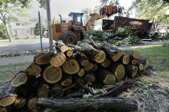 Appleton crews remove storm debris from East Glendale Avenue on Monday.