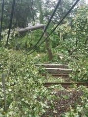 Fallen tree limbs  that brought own power lines and smashed a utility pole cover PATCO tracks Thursday night in Cherry Hill, preventing  hi-speedline trains from reaching two stations at the end of the line in Camden County -- Ashland and LIndenwold.