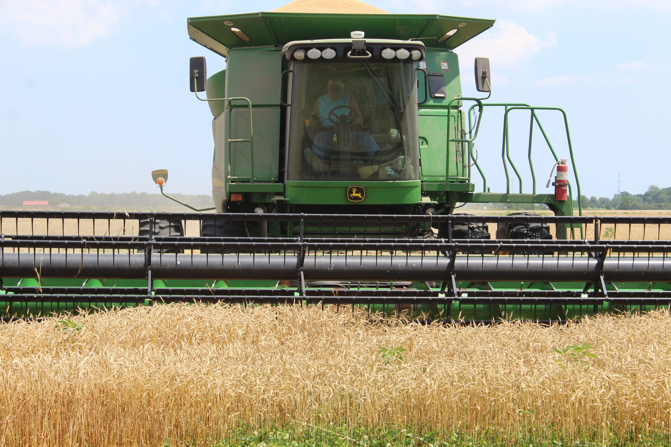 Ottawa County farmer Ron Laubacher harvests wheat on his John Deere combine. Laubacher had planned on growing and harvesting 120 acres of wheat, but wet weather killed 40 acres