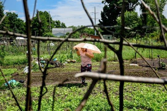 Kewal Mazar works on her garden plot on Monday, July 22, 2019, at the Webster Farm Community Garden in Lansing.