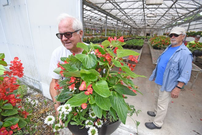 Doug Versaw and Dalton Derr load Dragon Wing Red Begonias from Alta Greenhouse on a UMADAOP bus to be placed around Mansfield.