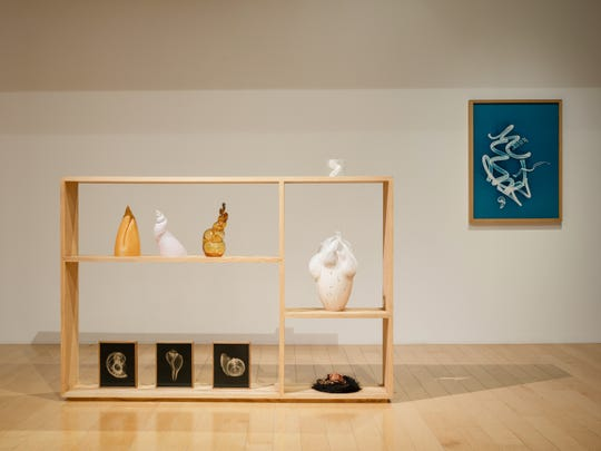 One of Akashi's cabinets, featuring her 3D-printed shells. One of her photograms can be seen on the wall in the back.