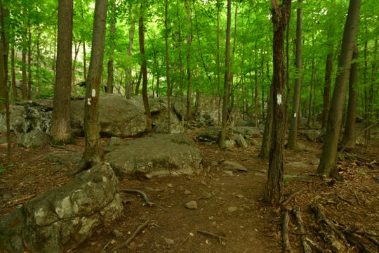 The trail weaves around boulders and starts to ascend quickly on the Stairway to Heaven .