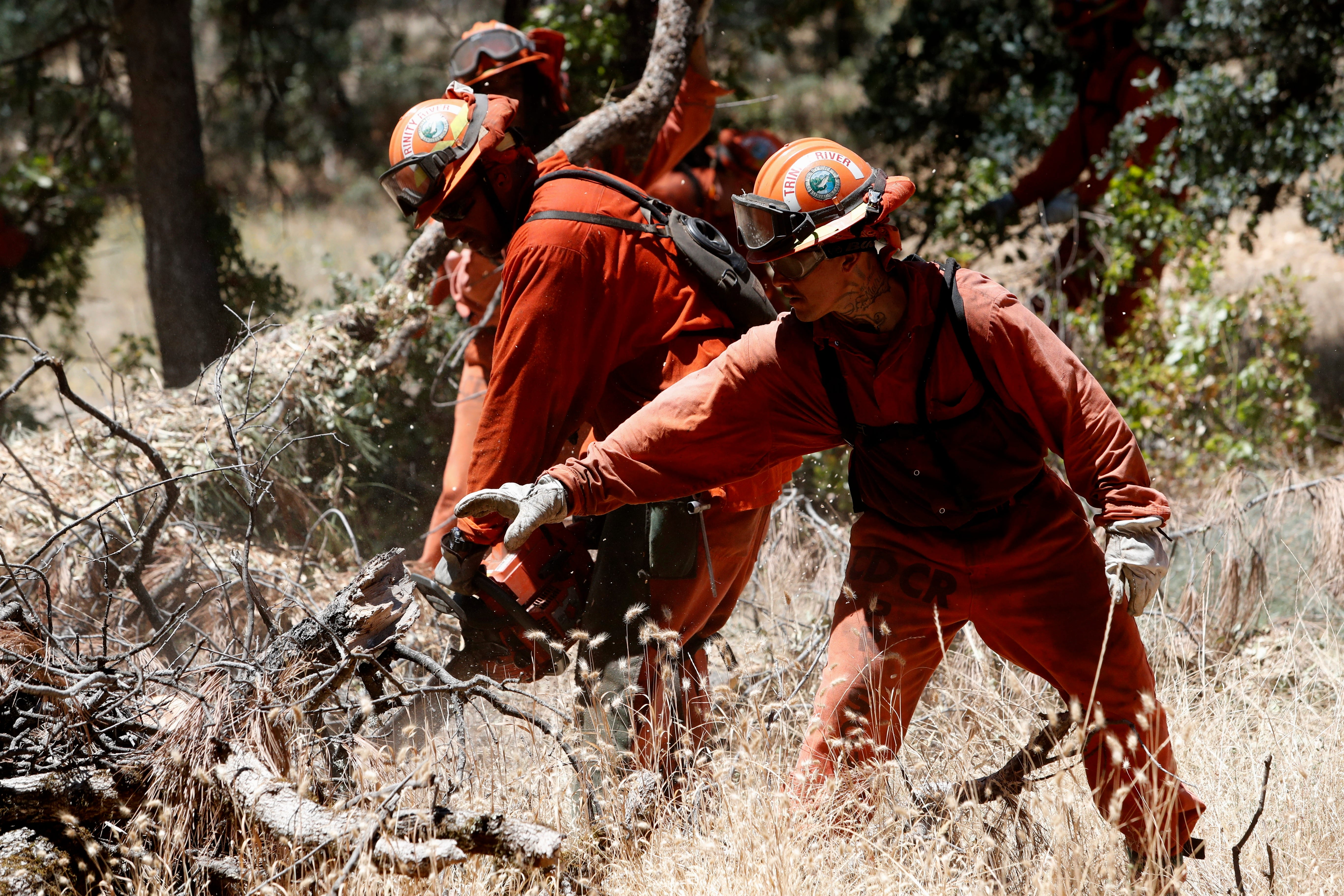 Trinity River Conservation Camp inmates use a chainsaw to thin vegetation on Bureau of Land Management property off Simmons Road in July 2019.