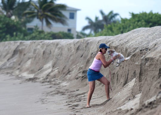 Maggie Rivera, of Fort Pierce, helps her dog Lily down the eroded shoreline Monday, April 18, 2016, on South Beach at Jetty Park in Fort Pierce. Rivera said she didn't realize the erosion was so bad when she decided to bring her visiting daughter to the beach.