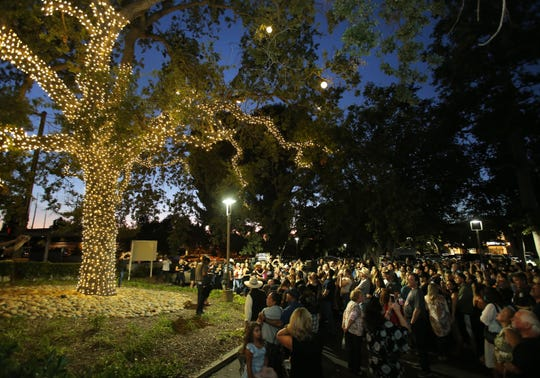 A tree near the Borderline Bar & Grill in Thousand Oaks is lit with 12 bulbs to honor the 12 victims of last year's shooting.