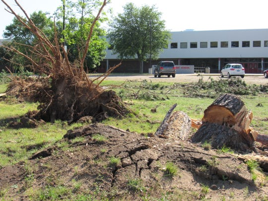Uprooted and fallen trees litter an area in front of Lincoln High School on 16th Street South in Wisconsin Rapids Monday, July 22, 2019, following a weekend storm that left widespread damage.