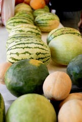 There have been plenty of ripe watermelons for the picking over the last two weeks at the Downtown Wichita Falls Farmers Market.
