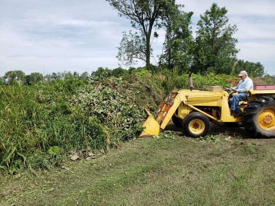 Bob uses his trusty loader tractor to push branches onto brush pile.