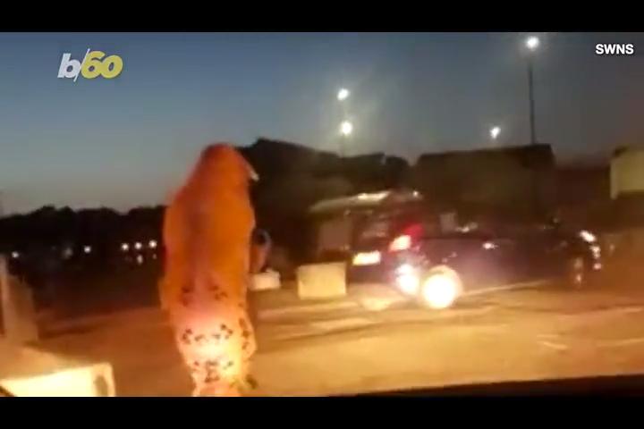 Hilarious dashcam video shows police chasing dinosaur