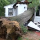 A tree crashed into a Courtland Street home in Neptune Township during storms that ripped through the area Monday night.