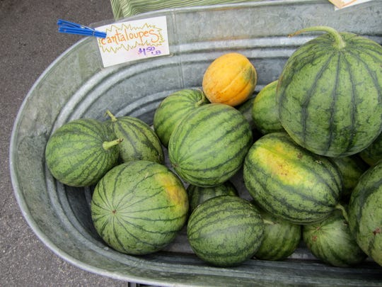 Watermelons and a cantaloupe from Ten Mile Farm.