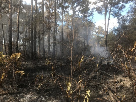 A brush fire closed portions of State Road 407 in Titusville July 22-23, 2019.