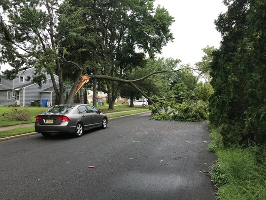 A snapped tree limb acts as an overpass for drivers on Caldwell Road at Plymouth Road in Cherry Hill. A number of road closures and traffic light outages resulted from Monday's storm.