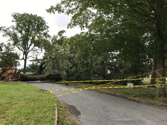 Caution tape blocks a path in Harleigh Cemetery where a tree was toppled by a storm Monday evening.