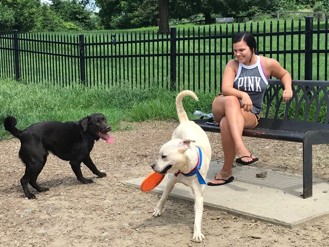 Olivia Salvatore watches her 1-year-old pup, Kobi (right) play with his new friend Tucker (left).