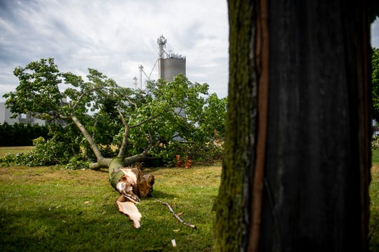 Strong winds snapped a large tree from its trunk on School Street in Frankenmuth, Mich., Sunday, July 21, 2019. Crews are continuing around-the-clock efforts to restore electrical service after severe storms over two days knocked out power for more than 800,000 Michigan homes and businesses.