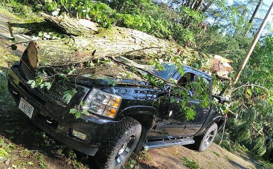 A view of the pickup on Oralea Lane in the town of Townsend before the tree that fell on it was removed.