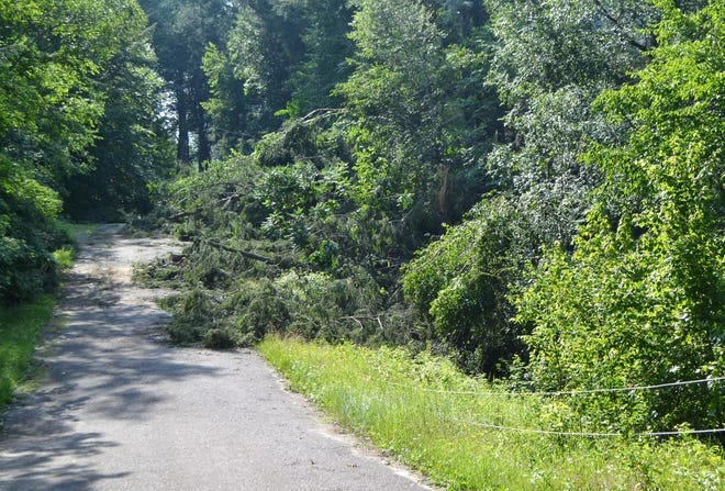 A downed power line and trees partially across the roadway can bee seen on Oralea Lane in the town of Townsend on Monday, July 22.