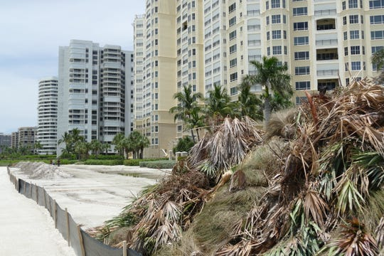 A pile of the removed vegetation was still visible on the seaward side of the Madeira Condominium on July 22.