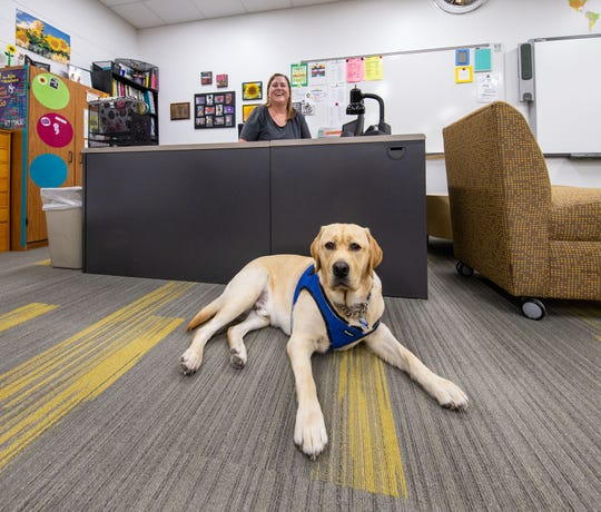 Mukwonago High School teacher Sue Bachofen works in her classroom with her dog Champ close at hand on Monday, July 22, 2019. Champ will be a full-time facility dog at the school.