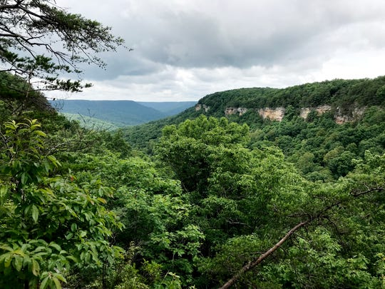 Rattlesnake Point, June 2018
