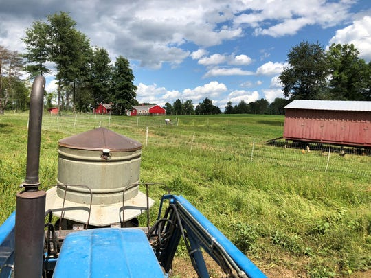 Antique metal feeders hold supplemental locally grown and milled feed for the pastured chickens at Yellow Bell Farm.