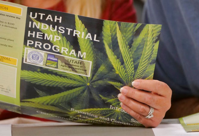 FILE - In this June 5, 2019, file photo, a person holds a program during public hearing on medical cannabis at the Utah Department of Agriculture and Food, in Salt Lake City, Utah. Utah's decision to award a smaller number of medical marijuana grower licenses has sparked protests from rejected applicants who claim the state is granting licenses to unqualified cultivators and will create a cannabis shortage. (AP Photo/Rick Bowmer, File)