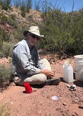 "Dr. Norman Horner, Professor Emeritus of Biology and former Director of Natural Laboratories at MSU Texas helped study and ultimately identify the ""Texas Mystery Spider"" two decades after it was discovered at the MSU Texas  Dalquest Desert Research Station (DDRS), near the Big Bend area."