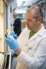 Steve Karlen, research scientist at UW–Madison, prepares a sample in John Ralph's lab at the Wisconsin Energy Institute building in Madison, Wis., Thursday, June 27, 2019.