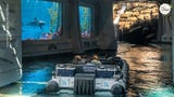 """From the Mosasaurus tank to Herbivore Valley, explore Universal Studio Hollywood's """"Jurassic World – The Ride."""""""