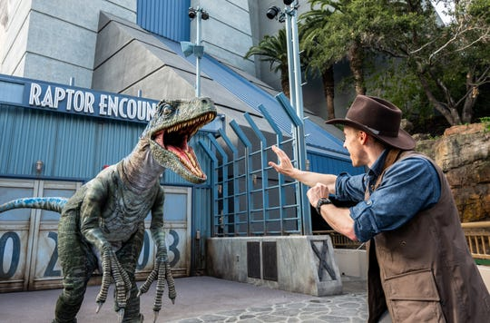 Raptor Blue has her own space, the Raptor Encounter, at Universal Studios Hollywood. It can't contain her.