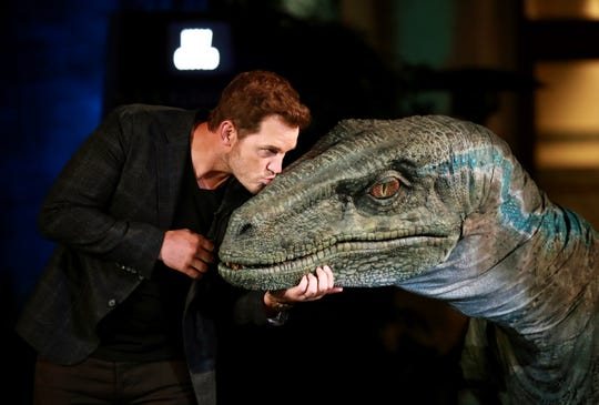 "Chris Pratt gives stage-crasher Blue a kiss on the nose during the opening of ""Jurassic World - The Ride."" Blue is one of three roaming dinosaurs at Universal Studios Hollywood."""