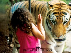 New Jersey day trips: Six Flags, Bronx Zoo, and 17 more zoos and aquariums