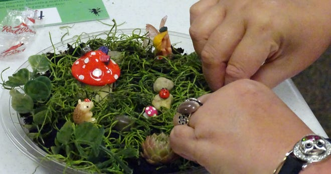 Susan Hill of Bucyrus works on her fairy garden during a program at the Bucyrus Public Library on Wednesday.