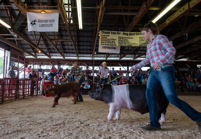Brother and sister Alyssa, 12, and David Rumpler, 13, of Trenton show their hogs at the Junior Fair Market Hog Show at the Butler County Fair on Tuesday July 23, 2019 in Hamilton, Ohio.
