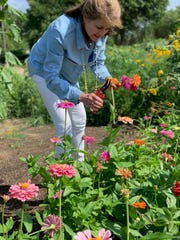 Mary Shapley picks zinnias from the garden in front of MM Shapley's Restaurant in Ridgeland.
