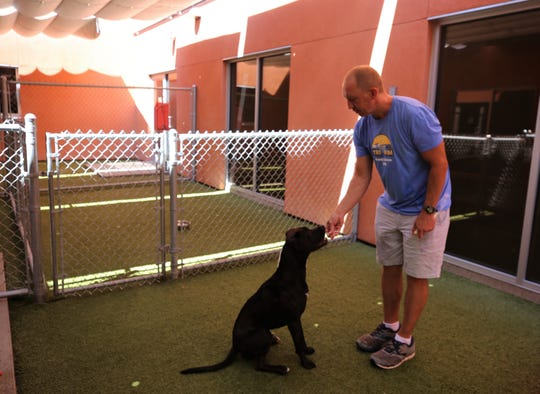 Mark Jones rewards long-time shelter resident Ace with a piece of cheese, Wednesday, July 24, 2019, at the Farmington Regional Animal Shelter.
