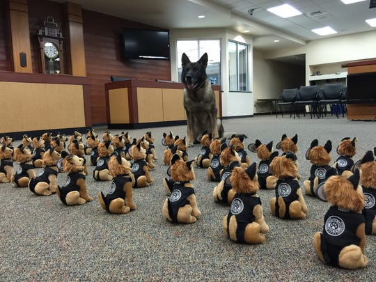"Wisconsin Rapids K-9 Diego checks out the new ""recruits"" in the City Council Chambers in 2015. The Wisconsin Rapids Citizens Police Academy Alumni Association sold the stuffed Diegos to raise money for the dog to replace K-9 Diego, who retired in 2015 and died this past week"