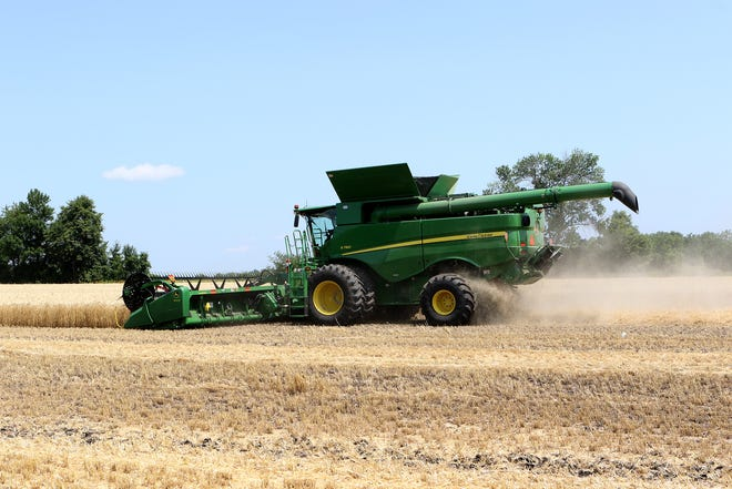 Some wheat fields in Dane and Jefferson county have been harvested. Pictured is wheat being harvested during a field demonstration at Farm Technology Days on July 23, 2019 in Johnson Creek.
