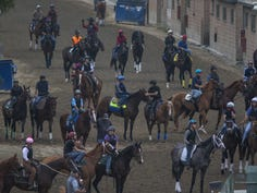 Race horses are seen during their morning workout at Santa Anita Park racetrack.