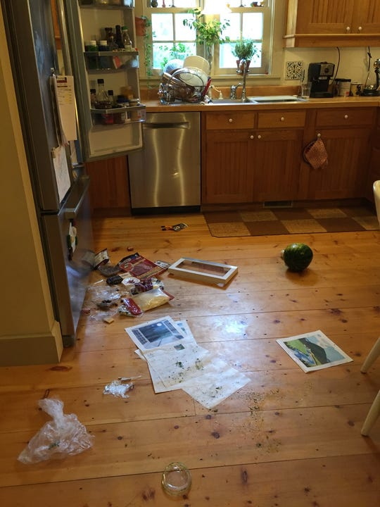 On July 20, 2019, a bear broke into an Underhill home and ransacked overnight while the homeowners slept, according to Vermont Department of Fish and Wildlife.